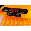 WQ-56 teljesen automatikus keltető nedvesség szabályozással 56 nagy tojás keltetésére